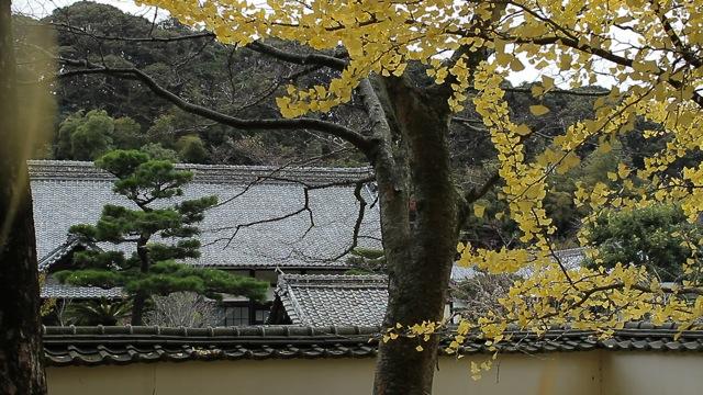 お寺2.jpg